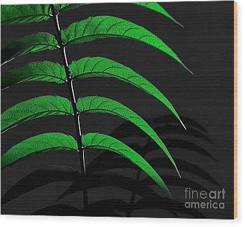 Backyard Abstract Wood Print