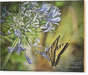 Backyard Nature Wood Print by Peggy Hughes