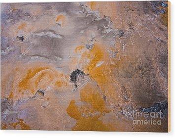 Bacterial Mat - 4 Wood Print by Dan Hartford