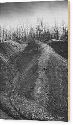 Wood Print featuring the photograph Badlands 2 by Michaela Preston