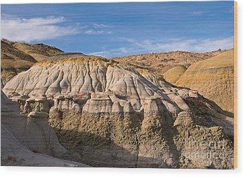 Badlands Erosion Wood Print by Vivian Christopher