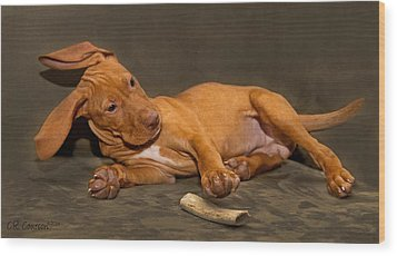 Bailey And Her Bone Wood Print by CR  Courson