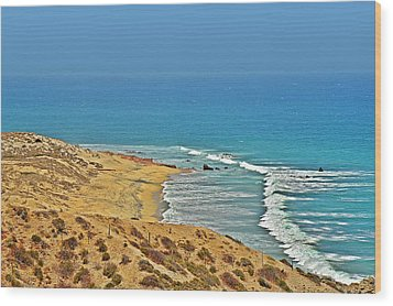 Wood Print featuring the photograph Baja California - Desert Meets Ocean by Christine Till