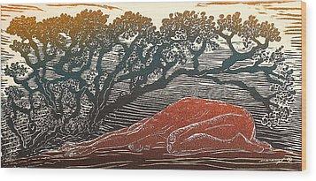 Bajo La Sombra Wood Print by Maria Arango Diener