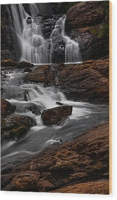 Bakers Fall IIi. Horton Plains National Park. Sri Lanka Wood Print by Jenny Rainbow