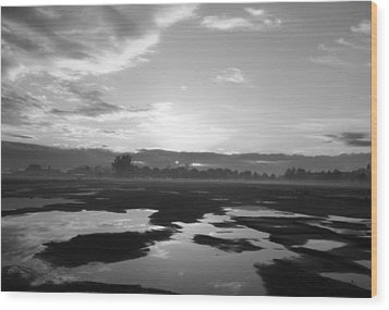 Wood Print featuring the photograph Bakersfield In Black And White by Meghan at FireBonnet Art