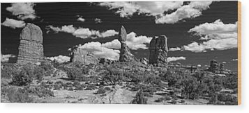 Balanced Rock Wood Print by Larry Carr