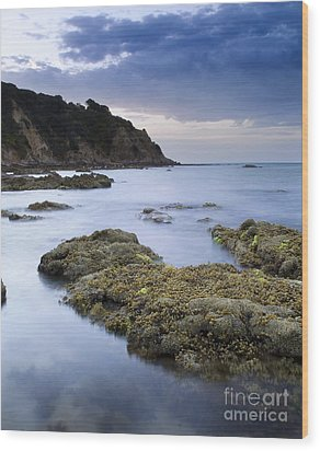 Balcombe Point Mount Martha Wood Print by Tim Hester