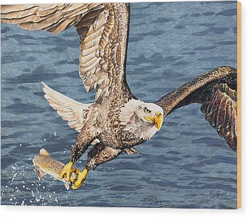 Wood Print featuring the drawing Bald Eagle Fishing  by Aaron Spong