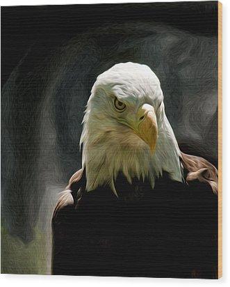 Bald Eagle Giving You That Eye Wood Print