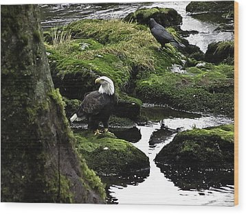 Wood Print featuring the pyrography Bald Eagle On The Creek. by Timothy Latta