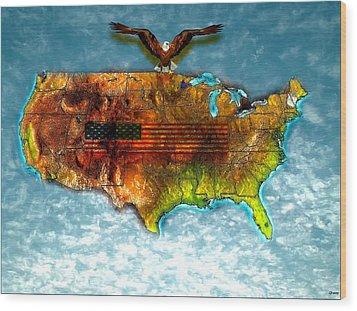Bald Eagle U.s. Map Wood Print by Daniel Janda