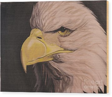 Bald Eagle Wood Print by Wil Golden