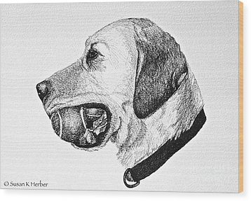 Ball Collector Wood Print by Susan Herber