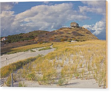 Wood Print featuring the photograph Ballston Beach Dunes by Constantine Gregory
