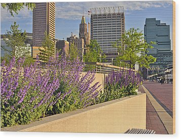Wood Print featuring the photograph Baltimore Inner Harbor With Flowers by Marianne Campolongo