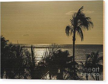 Balmy Beach Wood Print