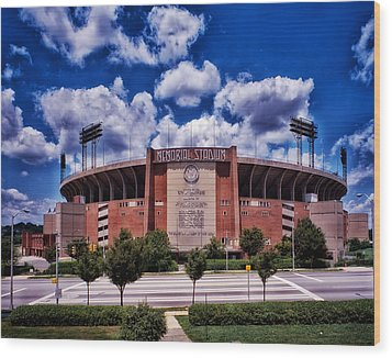 Baltimore Memorial Stadium 1960s Wood Print by Mountain Dreams