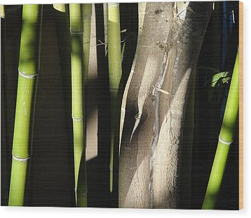 Wood Print featuring the photograph Bam  Boo  by Shawn Marlow