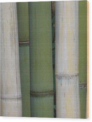 Bamboo 1 Wood Print