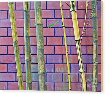 Bamboo And Brick Wood Print by Ethna Gillespie