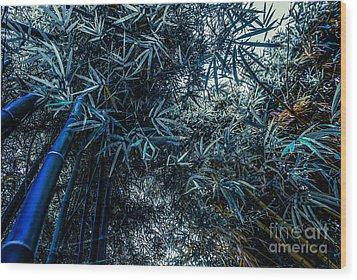 Bamboo - Blue Wood Print by Hannes Cmarits
