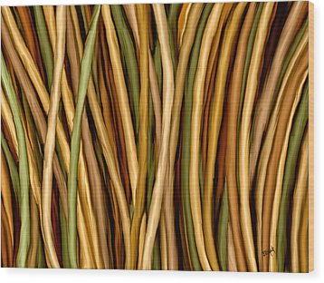 Bamboo Canes Wood Print by Brenda Bryant