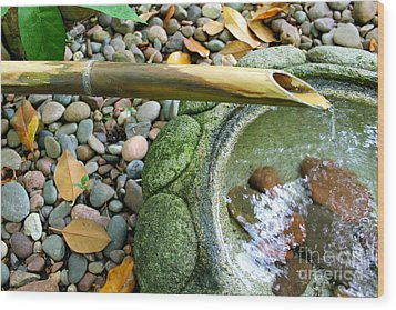 Bamboo Fountain Wood Print by Michelle Wolff
