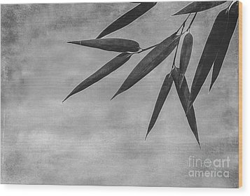 Bamboo - Gray Wood Print by Hannes Cmarits