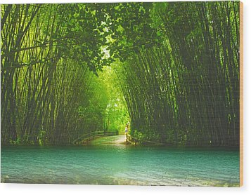 bamboo path to  Blue Lagoon  Wood Print