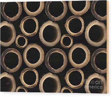 Bamboo Rings Wood Print by Bedros Awak