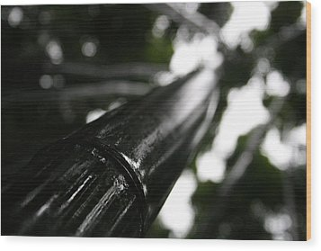 Bamboo Skies 7 Wood Print