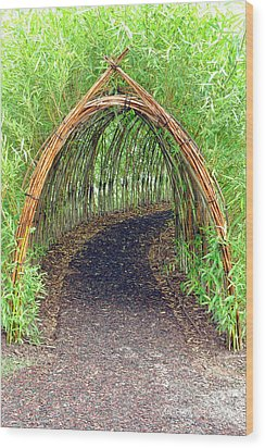 Bamboo Tunnel Wood Print by Olivier Le Queinec