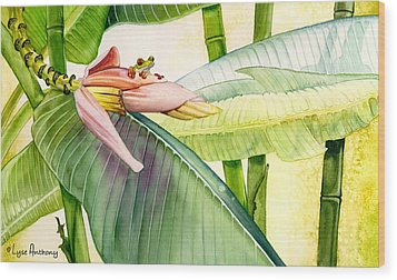 Banana Bloom Wood Print by Lyse Anthony