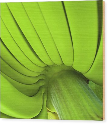 Banana Bunch Wood Print by Heiko Koehrer-Wagner