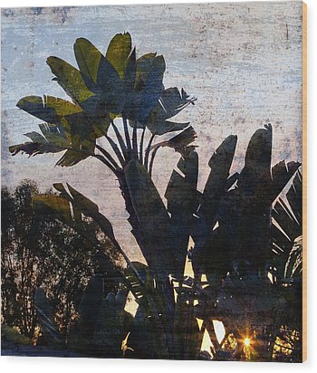 Banana Palms Wood Print by Gilbert Artiaga
