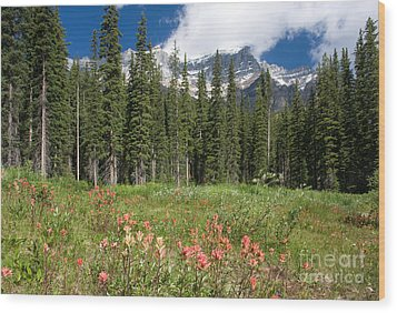 Wood Print featuring the photograph Banff Wildflowers by Chris Scroggins