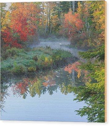 Bantam River Autumn Square Wood Print by Bill Wakeley
