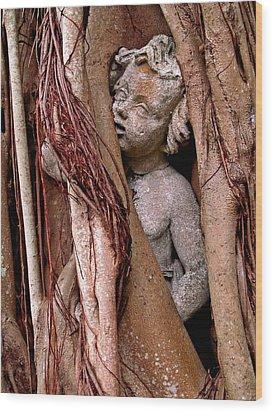 Banyan Boy Close Up Wood Print by Maria Huntley