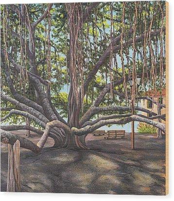 Banyan Tree Lahaina Maui Wood Print by Darice Machel McGuire