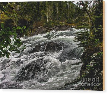 Baranof River Wood Print by Robert Bales