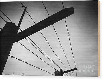 Barbed Wire Fence Wood Print by Michal Bednarek