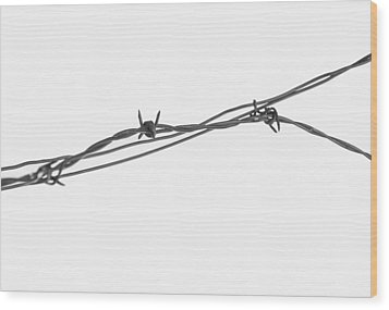 Barbed Wire Wood Print by Fran Riley