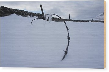 Barbed Wire Wood Print by Riley Handforth