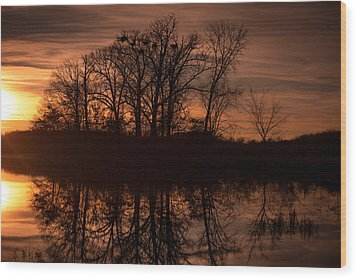 Wood Print featuring the photograph Bare Beauty by Jason Naudi Photography