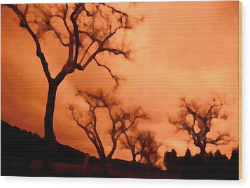 Bare Trees Wood Print by Mark Alan Perry