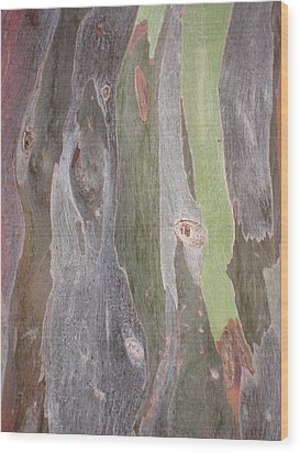 Bark Of Tree, San Juan Wood Print by Jean Marie Maggi