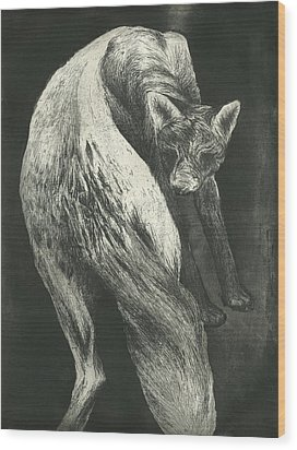 Bark Wood Print by Rebecca Bourke