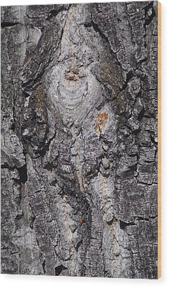Wood Print featuring the photograph Bark by Sheila Byers