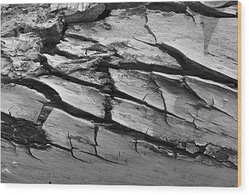 Barked Wood Print by Randal Bruck